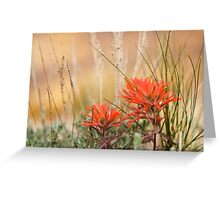 Paintbrushes on Gold Greeting Card