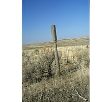 Unique Fence Post Photographic Print