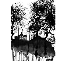 the house of gnarly trees..... Photographic Print
