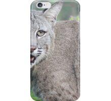 Max bobcat iPhone Case/Skin