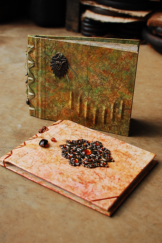 examples 2 & 3 of my photo albums/journals by tuesday