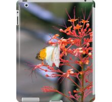 Butterfly Orange Icee iPad Case/Skin