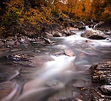 Autumn River by CalleHoglund