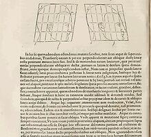 Famous Painter Parts Human Body Symmetry Four Books Geomety 1557 Albrecht Durer 0172 Heads by wetdryvac