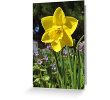 Delightful Daffodil Greeting Card