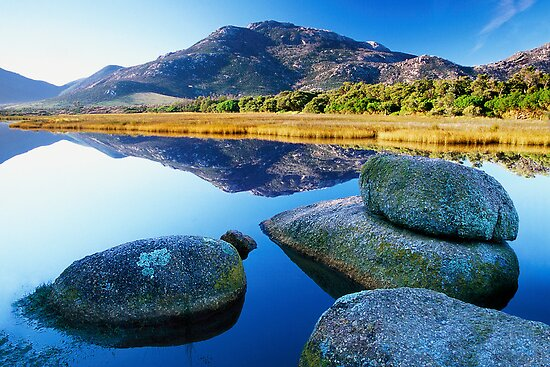 Tidal River Reflection by Travis Easton