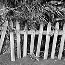 Fence by Steve Lovegrove