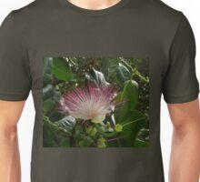 Flower of the Fish Poison Tree Unisex T-Shirt