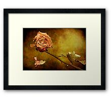 Wistful Framed Print