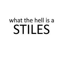 WHAT THE HELL IS A STILES by alexdimech24