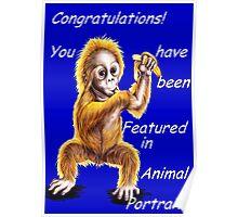 Animal Portraits banner challenge Poster