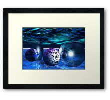 Underwater Worlds Framed Print