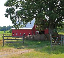 Red Barn on Farmer Road by krishoupt