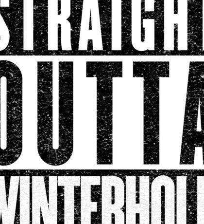 Adventurer with Attitude: Winterhold Sticker