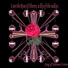 Rose Of Sharon - A lily of the Valleys by judygal
