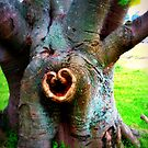heart tree by greg angus