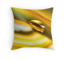 Leveraging the Light of Grace Throw Pillow