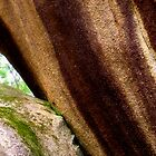 boulder's kiss by greg angus