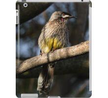 Young Adult Red Wattle Bird in Jacaranda iPad Case/Skin
