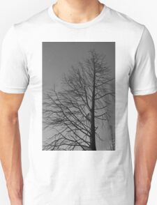 Remnant - Casualty of Canberra's Bushfire 2003 Unisex T-Shirt