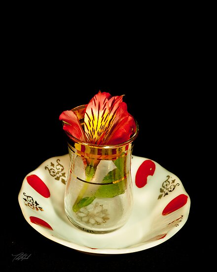 Flower in a tea cup by Theodore Black