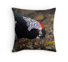 Lady Amherst Pheasant  Throw Pillow