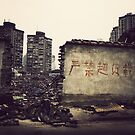 China : In the streets of Shanghai 2 by Jeremy  Barré