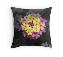Vibrant Colors with b&w background  Throw Pillow