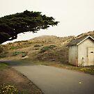 8000 miles USA : Point Reyes by Jeremy  Barré