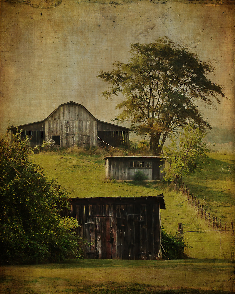 Blue Ridge Barns by Jean-Pierre Ducondi