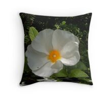 This is for Sandra Cockayne Throw Pillow