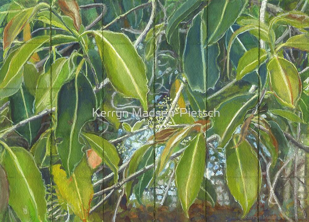 Euca - Leaves Section  by Kerryn Madsen-Pietsch
