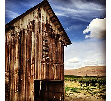 Weathered Barn in Washington State Wine Country  Photographic Print