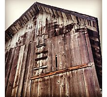 Distressed Barn in Wine Country  Photographic Print