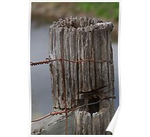 Aging Fence Post Poster