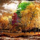 Honey-dipped foliage by Olga