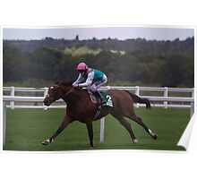 Frankel Stretches Out Poster