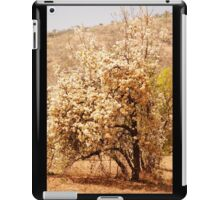 in bloom, south africa iPad Case/Skin
