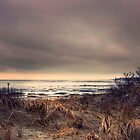 Dunes by photo-kia