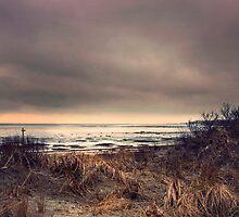 Dunes by photo-kia