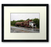 Logs to Paper! - Bushey Park Tasmania 2010 Framed Print