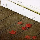 Fall on the Porch by Rebecca Cozart