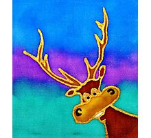colourful cartoon Silly Stag looking in the window. Photographic Print