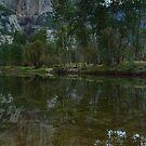 El Capitan & Merced River by Anne McKinnell