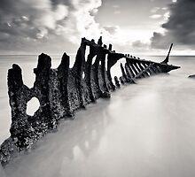 Jaws by Kane Gledhill