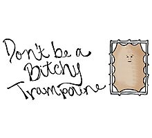 Don't be a B!tchy Trampoline - Dr. Who Photographic Print