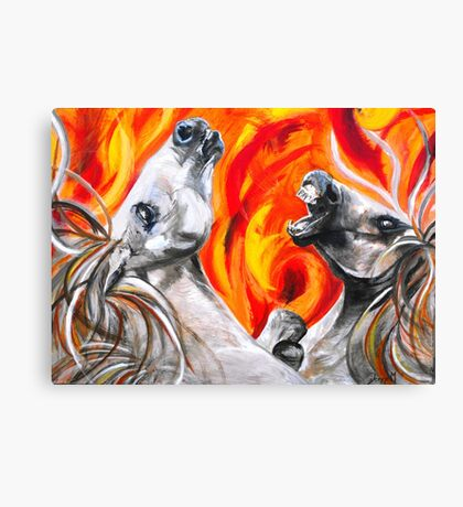 Fire and the fury Canvas Print