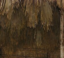 Thatched by ZIGSPHOTOGRAPHY