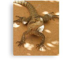 Wonderful Reptile Canvas Print