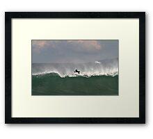 Bird And Wave Framed Print